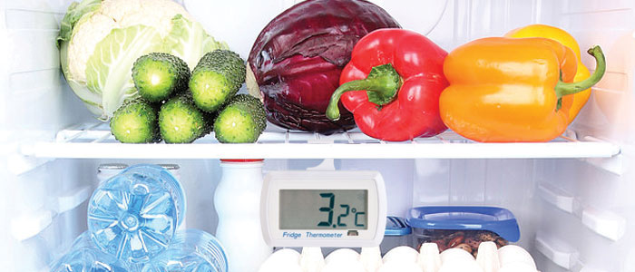 Termometar za frizider